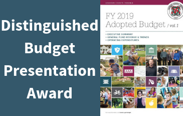Graphic for Distinguished Budget Presentation Award